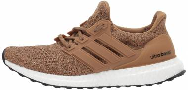Adidas Ultraboost - Brown (CM8118)