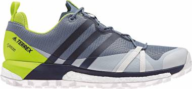 Adidas Terrex Agravic GTX RAW STEEL S18/COLLEG Men