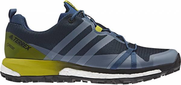 Adidas Terrex Agravic GTX men basic blue / core black / collegiate lime