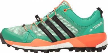 Adidas Terrex Skychaser - Green (BB0946)