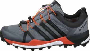 Adidas Terrex Skychaser GTX - Grey