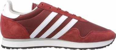 Adidas Haven - Red