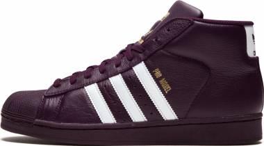Adidas Pro Model Purple Men