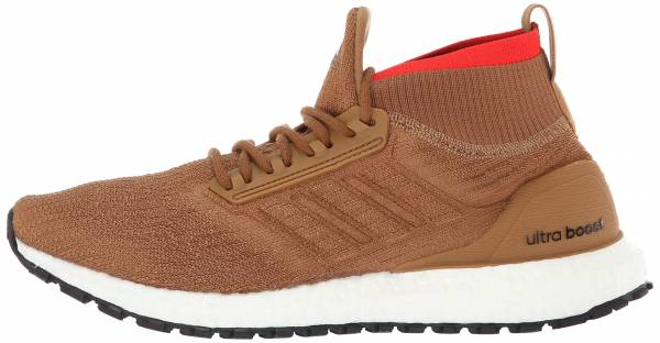Adidas Ultra Boost All Terrain Brown
