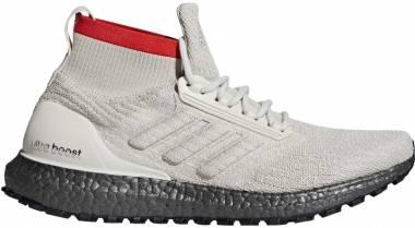 Adidas Ultra Boost All Terrain Brown Men