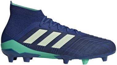 Adidas Predator 18.1 Firm Ground - Unity Ink-aero Green-hi Res Blue (CM7411)