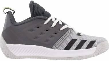 Adidas Harden Vol. 2 - Grey (AP9881)