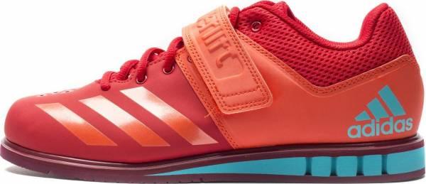 Adidas Powerlift 3.1 - Scarlet/Energy/Collegiate Burgundy