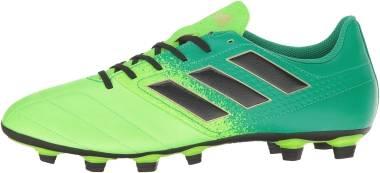 Adidas Ace 17.4 FxG - Green (BB1051)