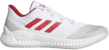 Adidas Harden B/E 2 - White (AQ0029)