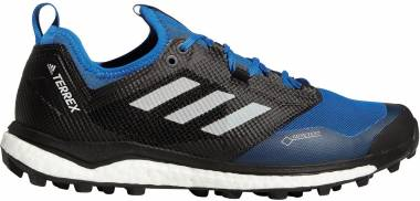 Adidas Terrex Agravic XT GTX Blue Men