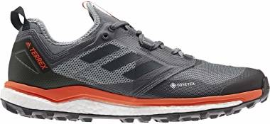 Adidas Terrex Agravic XT GTX - Grey Five