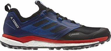 Adidas Terrex Agravic XT GTX - Blue (BC0379)