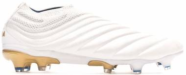 Adidas Copa 19+ Firm Ground - Cloud White / Gold Metallic / Football Blue (F35512)