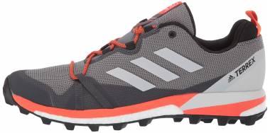 Adidas Terrex Skychaser LT - Grey