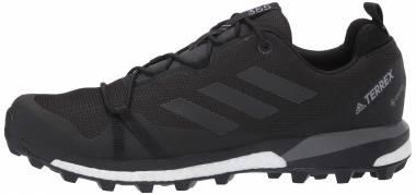 Adidas Terrex Skychaser LT GTX - Black (F36099)