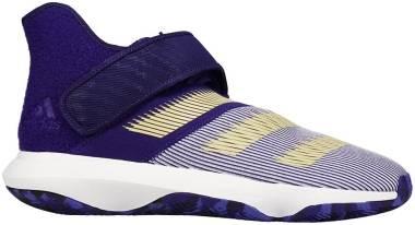 Adidas Harden B/E 3 - Purple (EH1616)