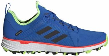 Adidas Terrex Speed GTX - Blue (EH2287)