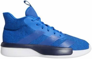 Adidas Pro Next 2019 - Glory Blue Collegiate Navy Ftwr White (EH1966)