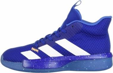 Adidas Pro Next 2019 - Bleu Roi Blanc Bleu