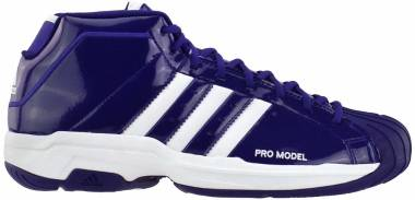 Adidas Pro Model 2G - Purple (FV7056)