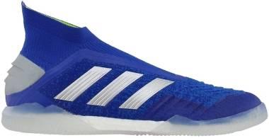 Adidas Predator 19+ shoes - Boblue/Silvmt/Actred (BB8114)