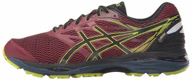 Asics Gel Cumulus 18 GTX Red Men