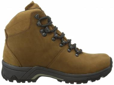 Berghaus Fellmaster GTX - Brown