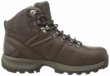 Berghaus Explorer Ridge Plus GTX - Braun Brown Dark Gull Grey V38 (21217V38)