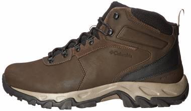 Columbia Newton Ridge Plus II Waterproof - Cordovan/Squash (1594732231)