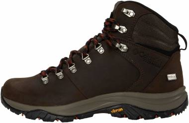 Columbia 100MW Titanium OutDry - Brown (1867831231)
