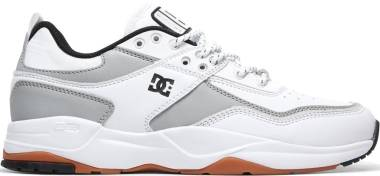 DC E. Tribeka LE Leather - White Silver