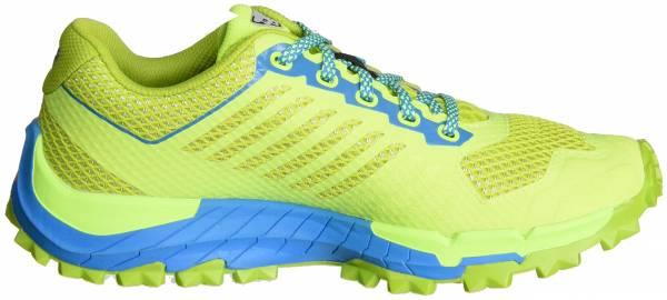 Dynafit Trailbreaker Green (Atomic Blue/Cactus 3795)
