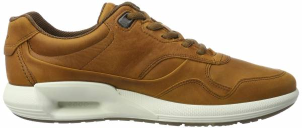 Ecco CS16 Low - Amber