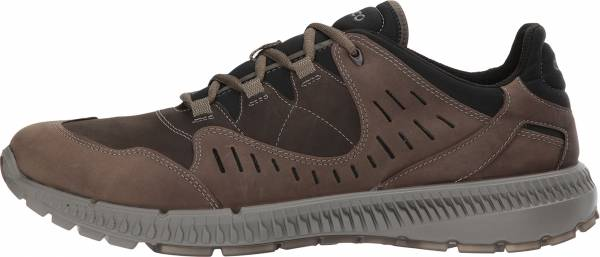 Ecco Terrawalk - Brown