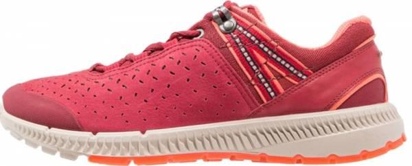Ecco Intrinsic TR Walk - Red Brick Brick