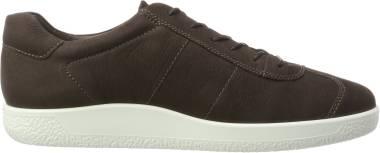 Ecco Soft 1 Sneaker - Coffee (4005142072)
