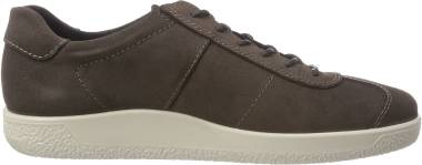 Ecco Soft 1 Sneaker - Braun Licorice 2507 (4005142507)