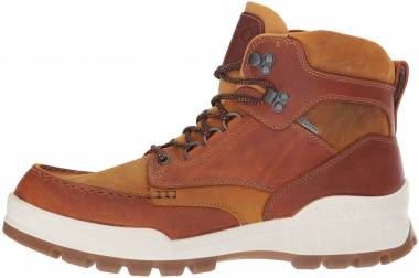 Ecco Track 25 Boot - Marron Amber Oak (83170450783)