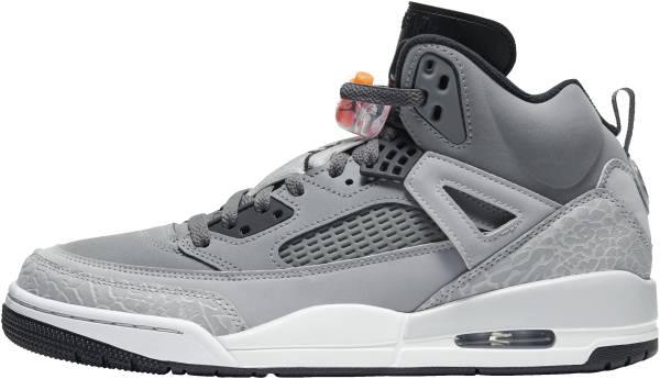 Jordan Spizike - Multicolore Cool Grey Black Wolf Grey Pure Platinum 008 (315371008)