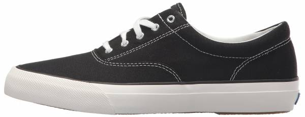 99ccdcfa7 10 Reasons to NOT to Buy Keds Anchor Canvas (May 2019)