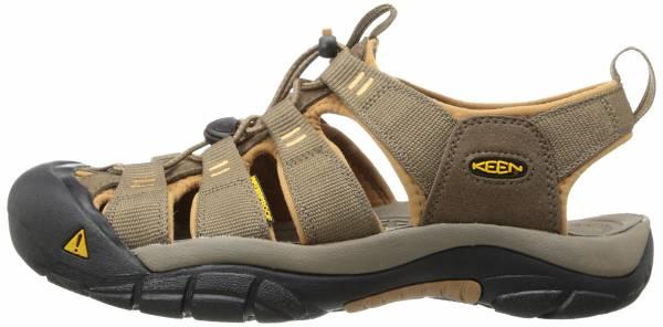 d6fe3286d0c2 keen-newport-h2-m-sitak-brw-sandale-trekking-sport -wasserdicht-herren-grosze-44-shitake-brown-sugar-ff84-600.jpg