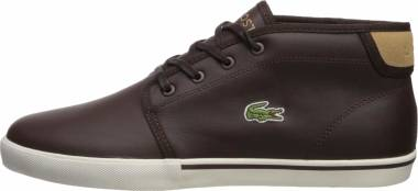 Lacoste Ampthill - Brown Dark Brown Light Tan 1w3