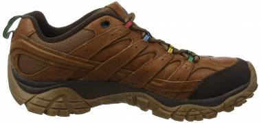 Merrell Moab 2 Earth Day - Brown (J50497)