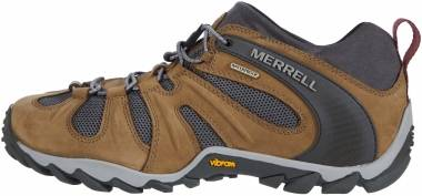 Merrell Chameleon 8 Stretch Waterproof - Butternut (J50001)