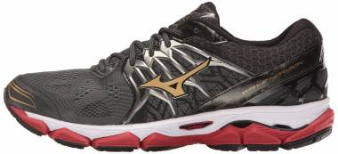 Mizuno Wave Horizon Dark Shadow/Gold Men