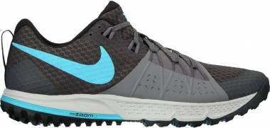 Nike Air Zoom Wildhorse 4 - Anthracite/Blue Fury-cool Grey (880565002)