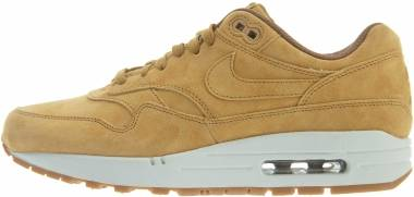 Nike Air Max 1 Premium Brown Men