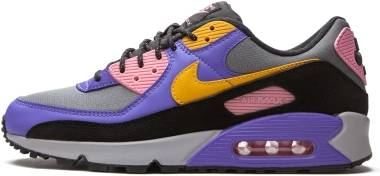 Nike Air Max 90 - Persian Violet/Pollen Rise (CN1080500)
