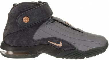 Nike Air Penny IV Wolf Grey/Mtlc Coppercoin Men